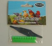 Bird Leg Rings : Marsue Pet