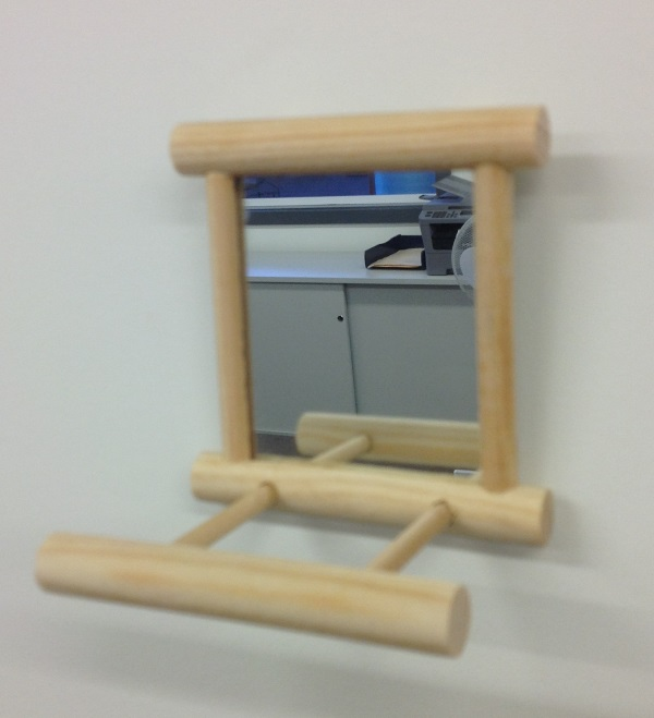 WOODEN FRAMED MIRRORED TOY W/LANDING PERCH